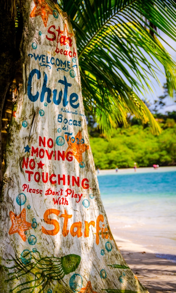 Hand-painted sign warning not to touch the stardish. There aren't a lot of starfish left around the beach, but we did spot one (and didn't touch it!)